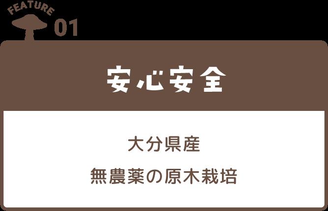 FEATURE01 安心安全